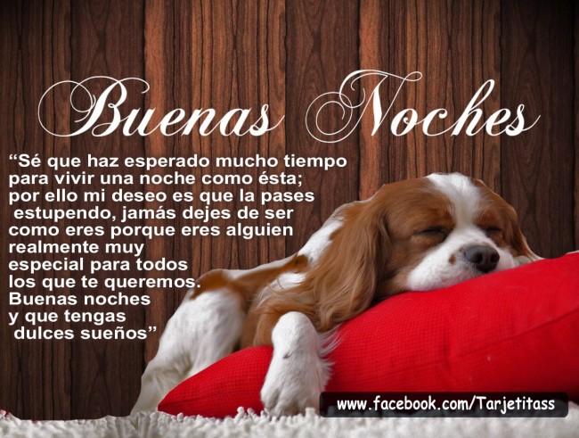 BUENAS NOCHES 13