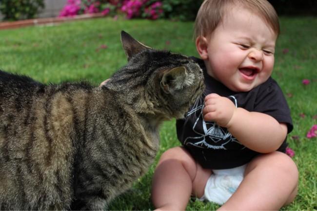 gato-jugando-con-un-bebe