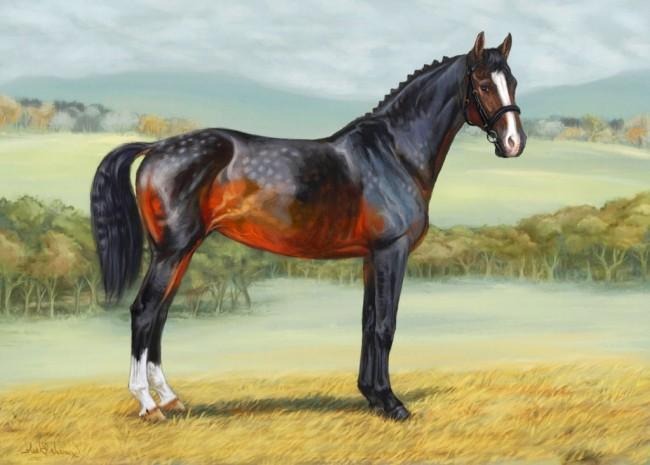 30 im genes de los caballos m s bonitos del mundo para - Los cuadros mas bonitos ...