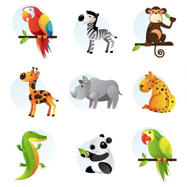 9 ilustraciones de animales de la selva tucan cebra chango koala dibujos vectoriales