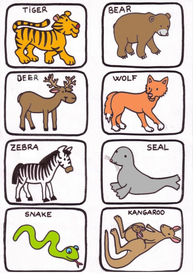 animales salvajes 2