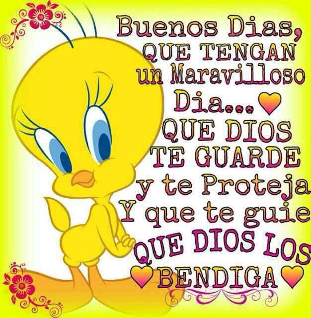 Good Morning Blessings In Spanish : Imágenes de piolin con mensajes divertidos y frases