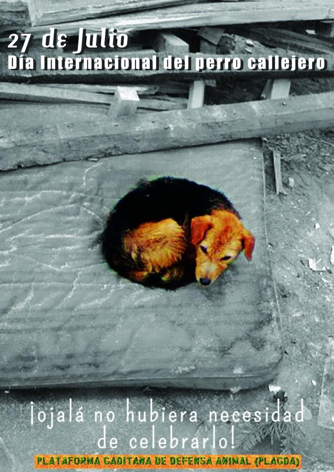 dia-internacional-perro-callejero-2-copy-conlogo