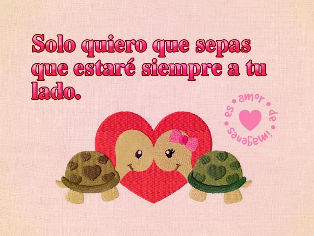 imagenes-de-amor-con-tortugas-enamoradas