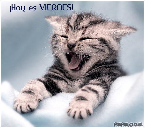 hoy_es_viernes_3