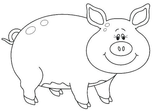 Dibujos De Animales Para Colorear Pintar E Imprimir